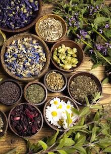 Schaaltjes met losse gedroogde biologische kruiden thee kruidenmelanges uit tuin Sprankenhof Udenhout Tilburg