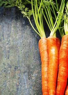Bosjes worteltjes als voorbeeld bij Workshop Energiek met (natuur)voeding bij Sprankenhof