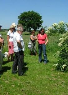 groep mensen krijgt uitleg over groente en fruitteelt in biologische tuin Sprankenhof Udenhout