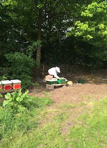 Imker Nanda bij haar bijenkasten in de tuin van Sprankenhof