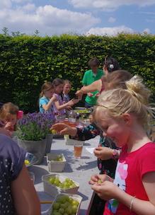 Kinderen zelf aan de slag tijdens workshop fruit kruiden parfum Sprankenhof Udenhout
